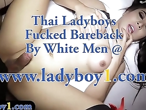 Pigtails ladyboy bareback anal fucked in different positions